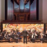 (悉尼大學)澳洲悉尼音樂學院 Mr. Terry
