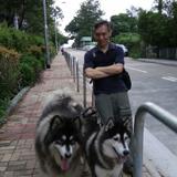 上門 寵物 訓練 - 寵物訓練 - 寵物訓練員 - kenny梁-kenny梁