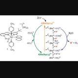 化學補習導師 - 化學補習 - 補 chem - 化學 補習-Calvin Wong