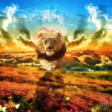 Kingdom Goshen Harvest