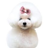 I-Doggy Pet house