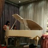 現場鋼琴演奏