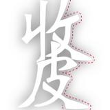 Kimi Lam