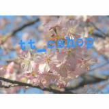 tt_cshop