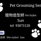 Pet Sitting And Boarding - Pet Sitter-Sun