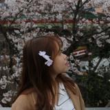 Jenny Li 육링