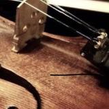 小提琴教師