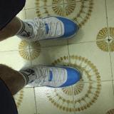 香港籃球總會 - 註冊 籃球教練 - Wong ho nam-Wong ho nam