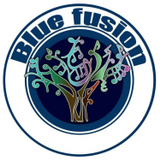 BLUE FUSION MUSIC