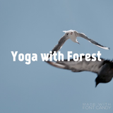Yoga with Forest