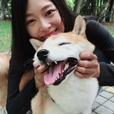 寵物保姆 - 報價-阿莫寵物保母到府服務