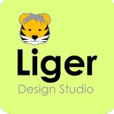 室內設計 - 室內設計師 - Liger Design Studio-Liger Design Studio