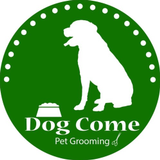 Dog Come Pet Grooming