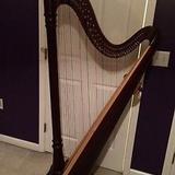 十二年全職樂器老師