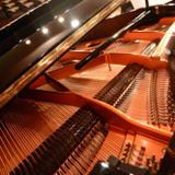 鋼琴/樂理老師