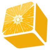 Lemon Dice Studio