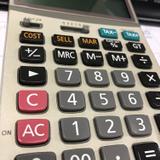 Professional accountant