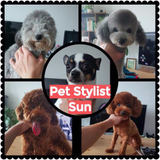 Pet Grooming-Pet Groomers-Pet Stylist Sun