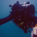 熱愛海洋及潛水多年,希望...